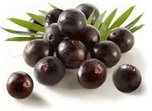 Conheça as frutas mais ricas em vitaminas-9