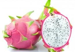 Benefícios da pitaya