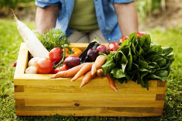 Benefícios de consumir alimentos orgânicos