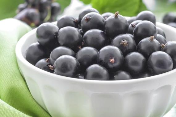 benefícios do suco de groselha negra-2