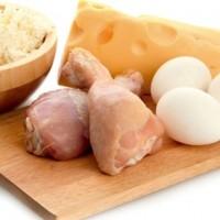 Dieta rica em proteína É seguro para a saúde
