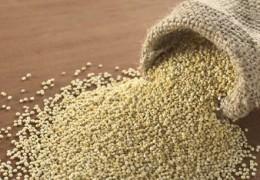 Amaranto: Uma excelente fonte de ferro para as gestantes