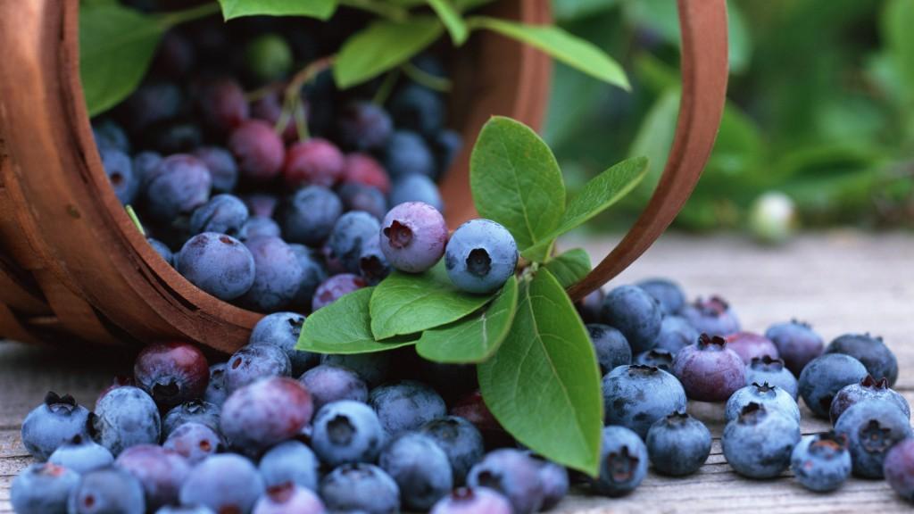 8 frutas saudáveis que devemos consumir regularmente