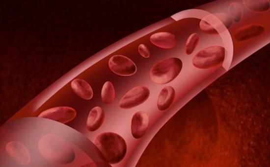 Anticoagulantes naturais: Tudo o que você precisa saber